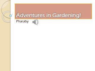 Adventures in Gardening!