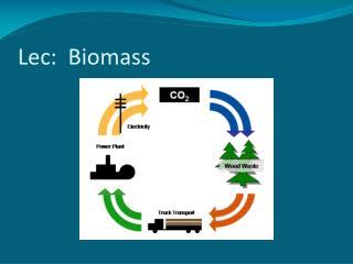 Lec :  Biomass