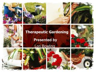 Therapeutic Gardening