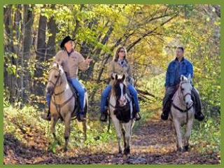 Ready to Ride Continuing  an active lifestyle with horses after an arthritis  diagnosis
