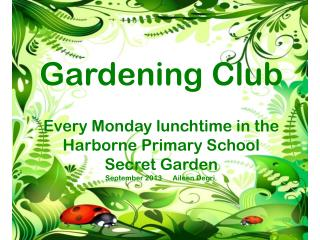 Gardening Club Every Monday lunchtime  in the  Harborne  Primary School  Secret Garden September 2013      Aileen  Degr