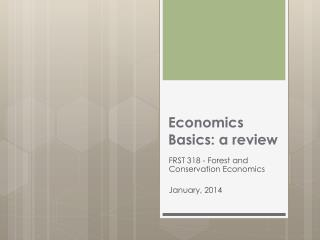 Economics Basics: a review