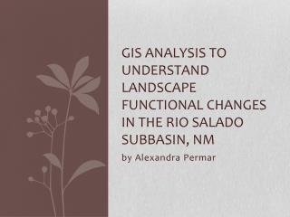 GIS Analysis  to understand landscape functional changes in the  rio salado subbasin ,  NM