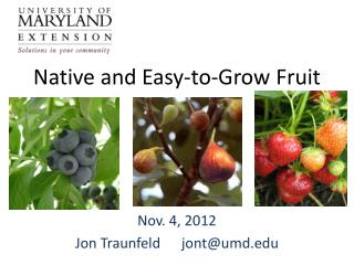 Native and Easy-to-Grow Fruit
