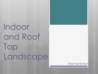 Indoor       and Roof Top Landscape