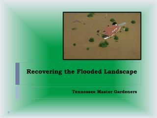 Recovering the Flooded Landscape