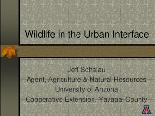 Wildlife in the Urban Interface