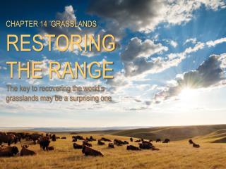 CHAPTER  14   GRASSLANDS RESTORING THE RANGE The key to recovering the world's grasslands may be a surprising one