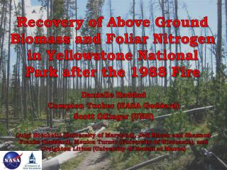Recovery of Above  G round  B iomass and Foliar  N itrogen in Yellowstone National Park after the 1988 Fire