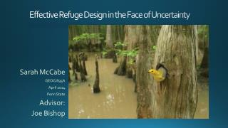 Effective Refuge Design in the Face of Uncertainty