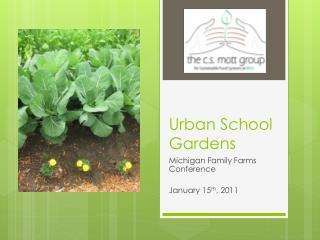 Urban School Gardens