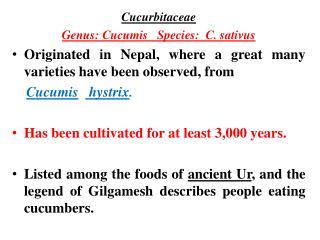 Cucurbitaceae  Genus: Cucumis   Species:  C. sativus Originated in Nepal, where a great many varieties have been observ