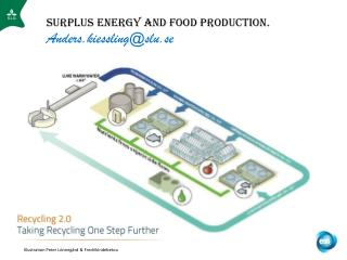 Surplus Energy and food production. Anders.kiessling@slu.se
