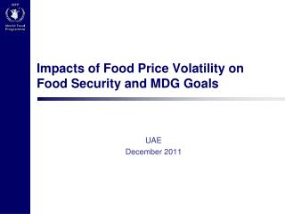 Impacts  of Food Price Volatility on  Food Security and  MDG Goals