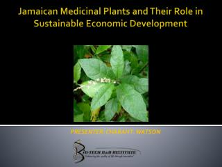 Jamaican Medicinal Plants and  Their  Role in Sustainable Economic Development