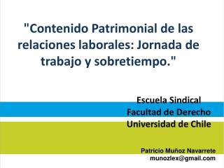 Patricio Muñoz Navarrete munozlex@gmail.com