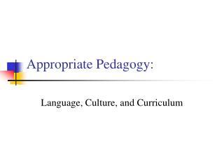 appropriate pedagogy:
