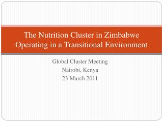 The Nutrition Cluster in Zimbabwe Operating in a Transitional Environment