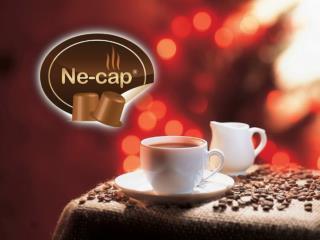 ne-cap.com