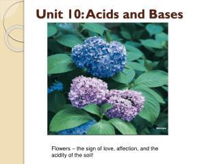 Unit 10: Acids and Bases