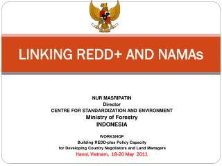 LINKING REDD+ AND NAMAs