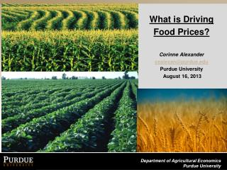 What is  Driving  Food  Prices? Corinne Alexander   cealexan@purdue.edu Purdue  University August 16, 2013