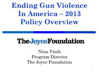 Ending Gun Violence In America – 2013 Policy Overview