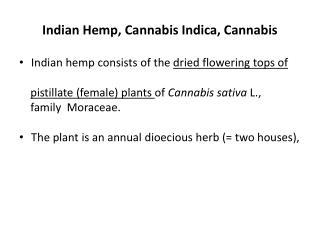 Indian Hemp, Cannabis Indica, Cannabis