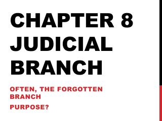 Chapter 8 Judicial Branch