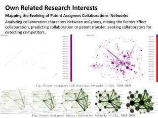 Own Related Research Interests Mapping the Evolving of Patent Assignees Collaborations  Networks