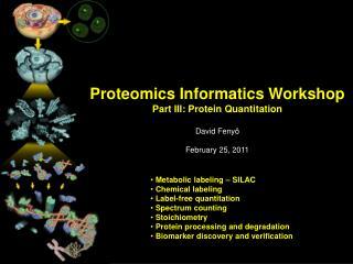 Proteomics Informatics Workshop Part III: Protein  Quantitation David  Fenyö February 25, 2011