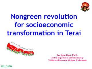 Nongreen  revolution for socioeconomic transformation in  Terai