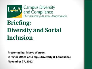 Briefing: Diversity and Social Inclusion