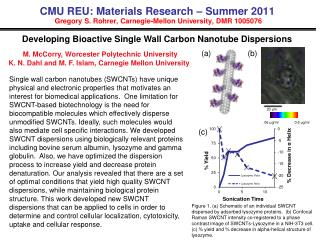 CMU REU: Materials Research – Summer 2011  Gregory S. Rohrer, Carnegie-Mellon University, DMR 1005076