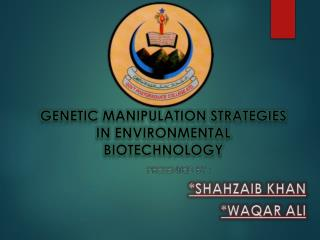 Genetic manipulation strategies in environmental biotechnology