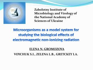 Zabolotny  Institute of Microbiology and Virology of the National Academy of Sciences of Ukraine