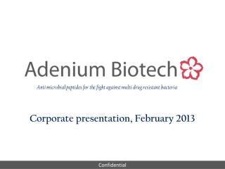 Corporate presentation, February 2013