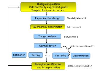 Biological question Differentially expressed genes Sample class prediction etc.