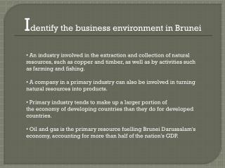 I dentify the business environment in Brunei