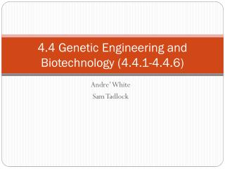 4.4 Genetic Engineering and Biotechnology (4.4.1-4.4.6)