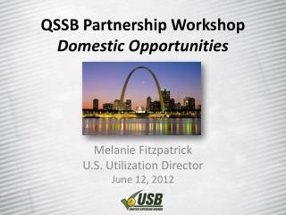 QSSB Partnership Workshop Domestic Opportunities