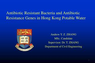 Andrew Y. Z. ZHANG MSc. Candidate Supervisor: Dr. T. ZHANG Department of Civil Engineering