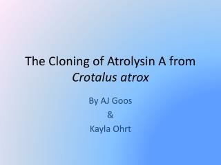 The Cloning of  Atrolysin  A from  Crotalus atrox