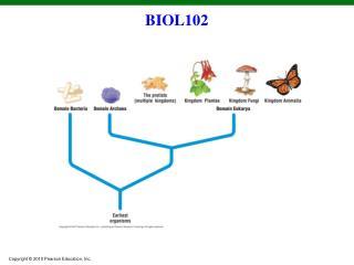BIOL102
