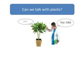 Can we talk with plants?