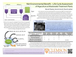Net Environmental Benefit – Life Cycle Assessment of Algaculture at Wastewater Treatment Plants
