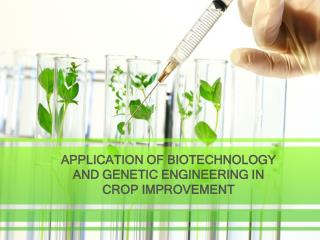 APPLICATION OF BIOTECHNOLOGY AND GENETIC ENGINEERING IN CROP IMPROVEMENT