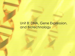 Unit 8: DNA , Gene Expression, and Biotechnology