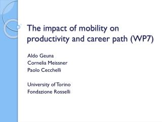 The impact of mobility on productivity and career path (WP7)