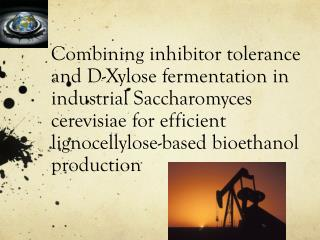 Combining inhibitor tolerance and D-Xylose fermentation in industrial Saccharomyces  cerevisiae  for efficient  lignoce